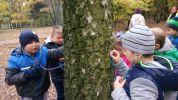 Warsztaty ekologiczne w lesie łagiewnickim